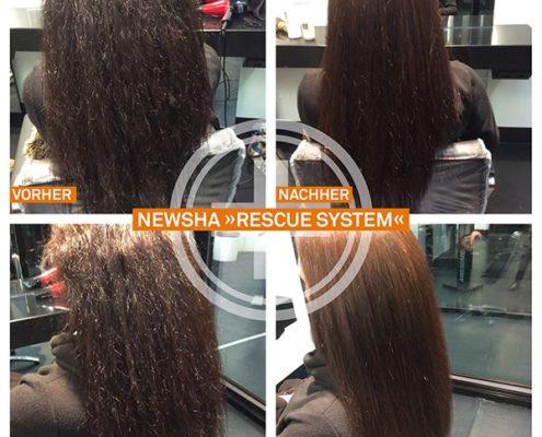 NEWSHA Rescue Ergebnisse